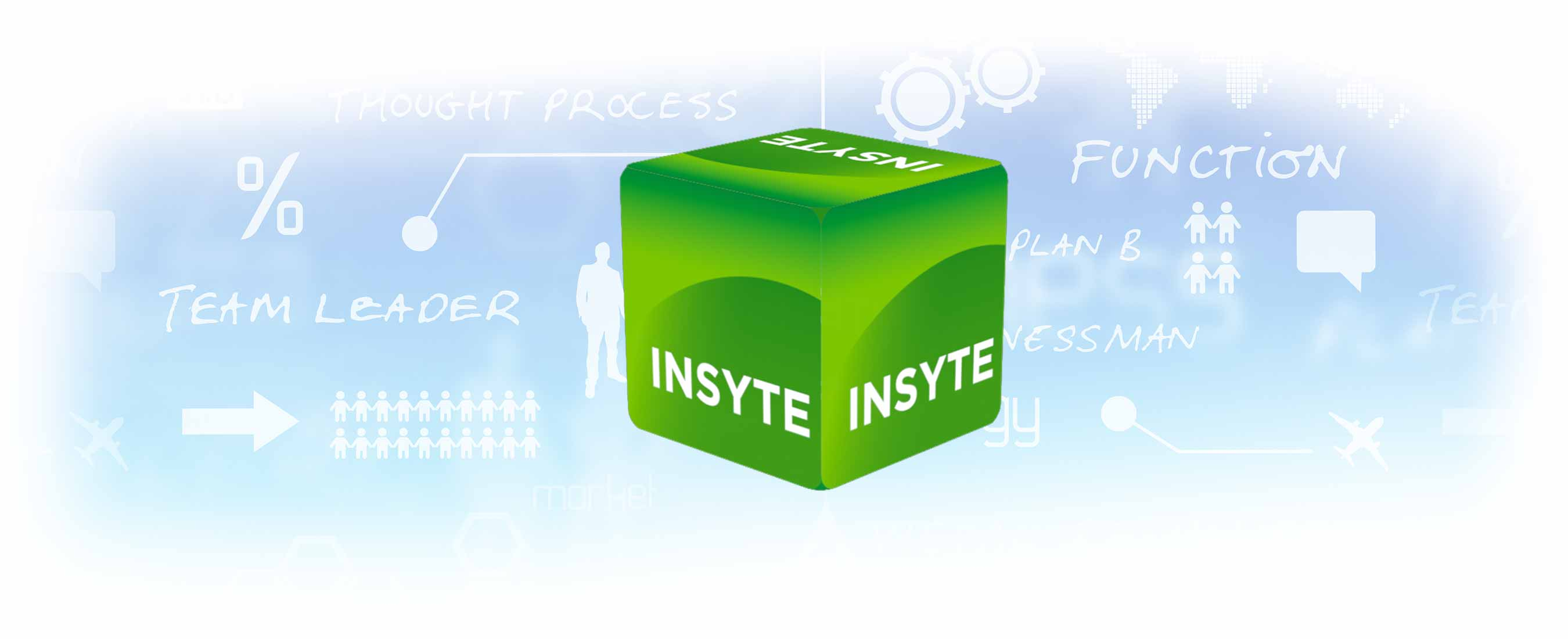 insyte crm software for the window furnishing industry